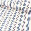 Лён полотенечный с синей и красной полоской, ширина 50 см