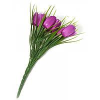 Тюльпаны темно сиреневые букет 25 см (26585M)
