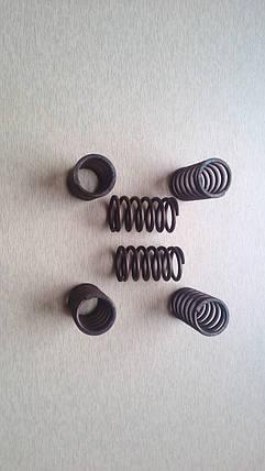Пружины нажимного диска (комплект - 6 шт.), фото 2