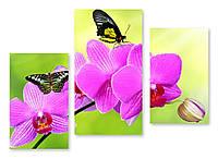 Модульная картина черные бабочки на орхидее