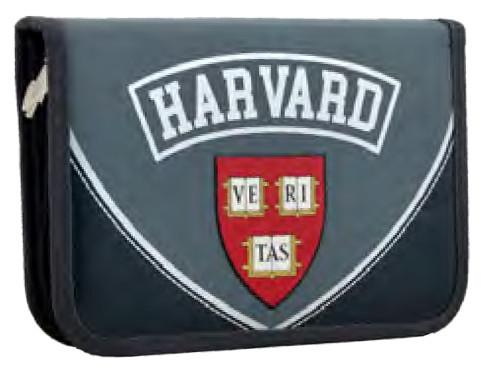 Пенал твердий одинарний c клапаном  Harvard, 20.5*14*3.5 531764 YES