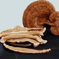 Уникальный гриб Ганадерма слайсы от рака (Рейши) 500г