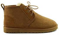 Зимние мужские ботинки угги UGG Australia Neumel рыжие