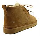 Зимние мужские ботинки UGG Australia Neumel Chestnut оригинальные Угги Австралия Ньюмел рыжие, фото 4