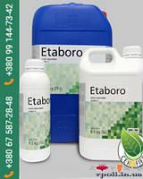 Этаборо (Etaboro)