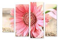 Модульная картина большой розовый цветок