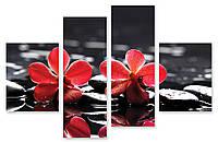 Модульная картина камни и красная орхидея