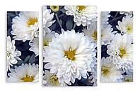 Модульная картина белые цветы макро 3д