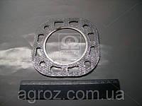 Прокладка головки блока ПД 10 (пр-во ГЗПД) Д24.с18-А