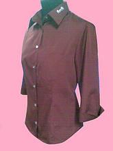 Жіноча блузка рукав 3/4 бордового кольору