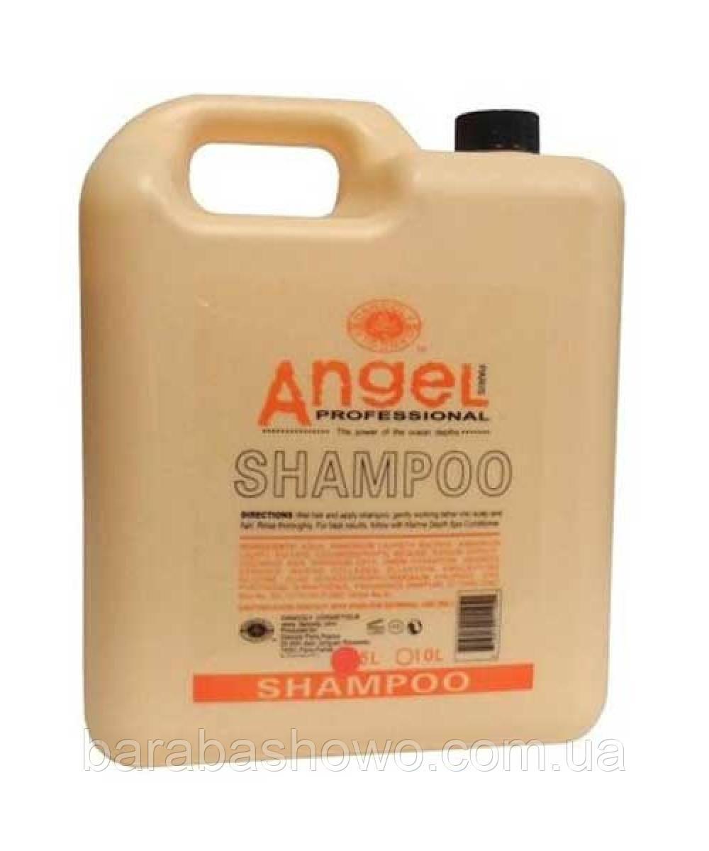 Шампунь Для Сухих Волос Angle 10L