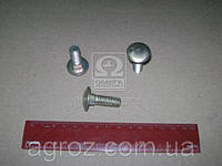 Болт ГАЗ М10х30 бортов задний ГАЗ груз. кругл. гол. и квадр. подгол. (покупн. ГАЗ) 210406-П29