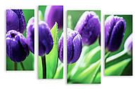 Модульная картина фиолетовые тюльпаны
