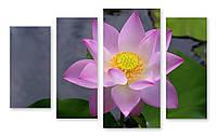 Модульная картина светло-фиолетовый цветок