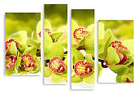 Модульная картина лимонная орхидея