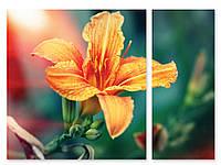 Модульная картина ярко-оранжевый цветок 3D
