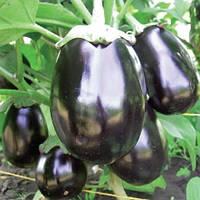 Семена баклажана Перфекшен F1 100 шт, Unigen Seeds