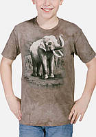 3D футболка для мальчика The Mountain р.XL 13-15 лет футболки детские 3д (Король Азии)