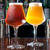 Бокал для пива Teku - 330 мл (Rastal), фото 2