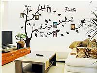 Интерьерная наклейка на стену  Дерево и фото (AY9063)