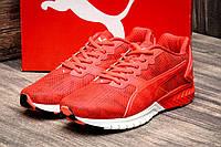 Кроссовки мужские Puma Ignite Dual для повседневной ходьбы и спорта.