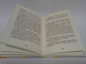 Щоденник Ельфа Малетич Видавництво Старого Лева, фото 2