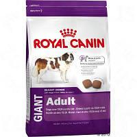 Корм Роял Канін Гігант Адалт Royal Canin Giant Adult для дорослих собак гігантських порід 4кг