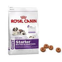 Корм Роял Канін Гігант Стартер Royal Canin Giant Starter для цуценят і годуючих собак 15кг