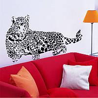 Интерьерная наклейка на стену Леопард (AY9029)
