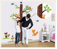 Интерьерная наклейка на стену Ростомер дерево (AY221)