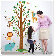 Интерьерная наклейка на стену Ростомер дерево (SK2001AB)