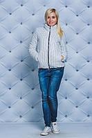 Куртка женская короткая демисезонная Горох