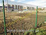 Заборная сетка для дачи, фото 9