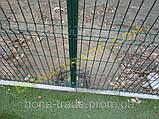 Панельные заборные сетки, фото 4
