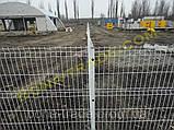Панельные заборные сетки, фото 5