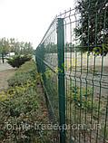 Панельные заборные сетки, фото 6