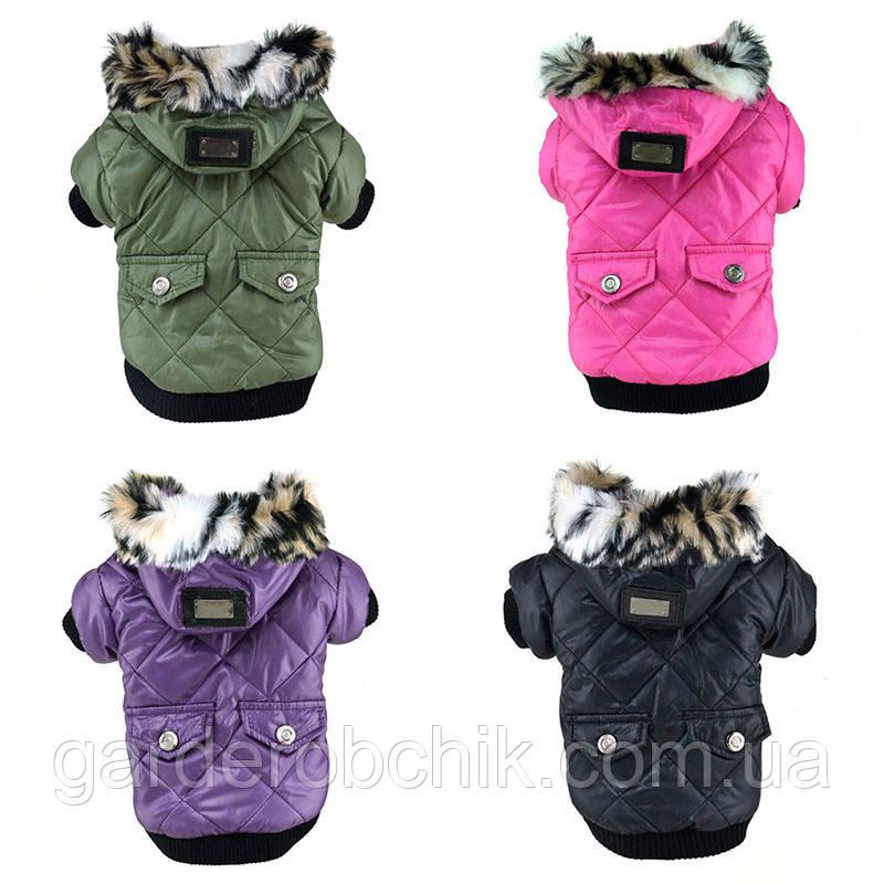 """Куртка для собаки """"Classik"""". Одежда для собак"""