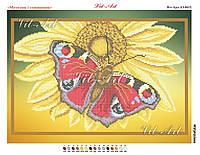 Метелик і соняшник