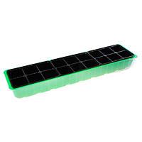 Мини-парник для рассады 60 см 3 кассеты 2х3