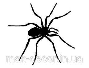 Вінілова наклейка на авто - павук 11 20х19 см