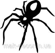 Вінілова наклейка на авто - павук 18