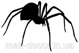 Вінілова наклейка на авто - павук 19