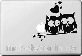 Вінілова наклейка - Парочка сов на гілці