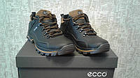 Ecco Gore-Tex Smart Leather
