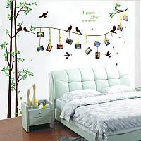 Интерьерная наклейка на стену Дерево и рамки (SK2007W), фото 1