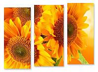 Модульная картина большие желтые цветы