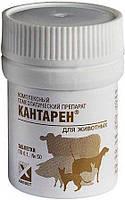 Кантарен 0,1 таблетки № 50 гомеопатический ветеринарный препарат для собак и кошек
