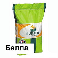 Семена подсолнечника Белла Евралис