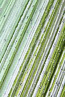 Шторы  нити  радуга  дождь №1+15+19 (белый, салатовый, оливка)