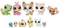 Набор: Коллекция петов 11 фигурок Littlest Pet Shop (B9343)